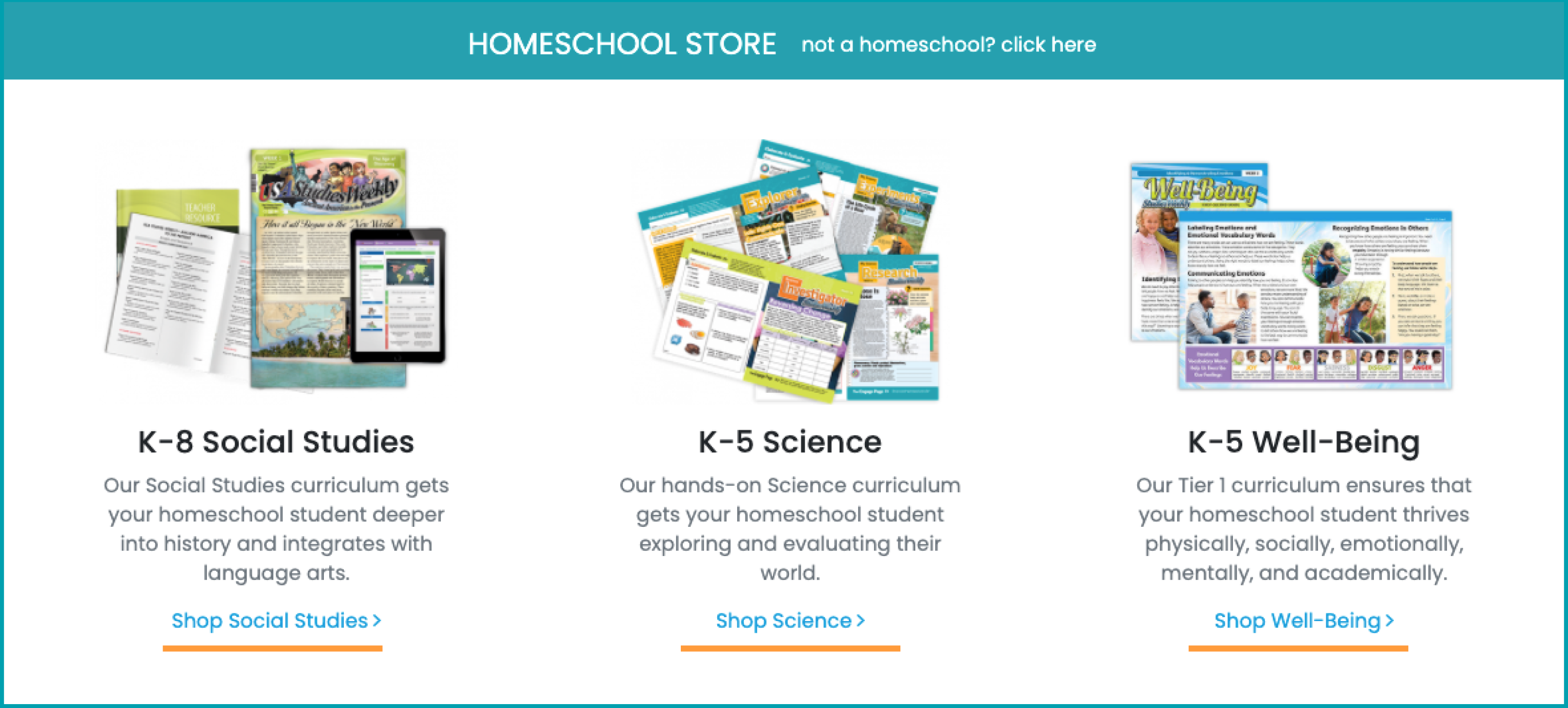Store-Homeschool-Step-2a-2021.png